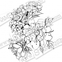 Stampendous Sketchy Blooms Cling Rubber Stamp
